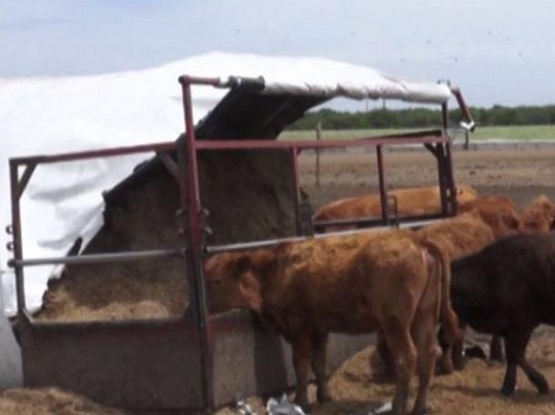 instalaciones rurales adaptadas para el autoconsumo