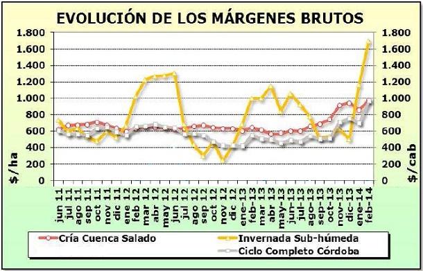 ganaderia - como impacto la devaluacion en los margenes ganaderos - Minagri - grafico 4 - evolucion de los margenes brutos