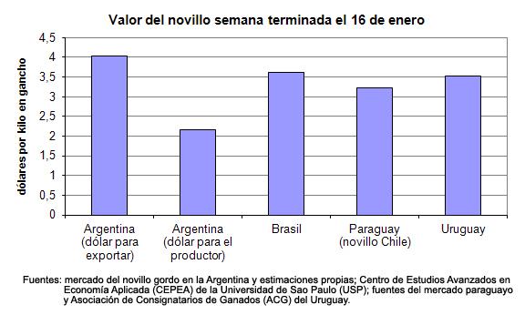 precios de la carne en el mercosur sin cambios - valor del novillo