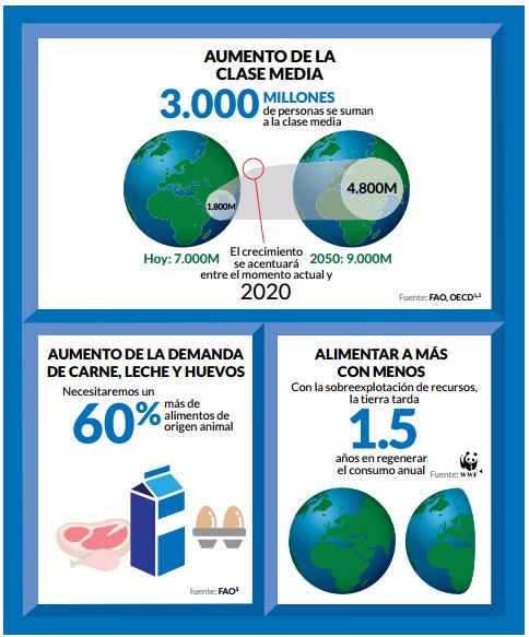 produccion de carne vacuna - para el 2050 faltaran 700 millones de cabezas de ganado vacuno - infografia